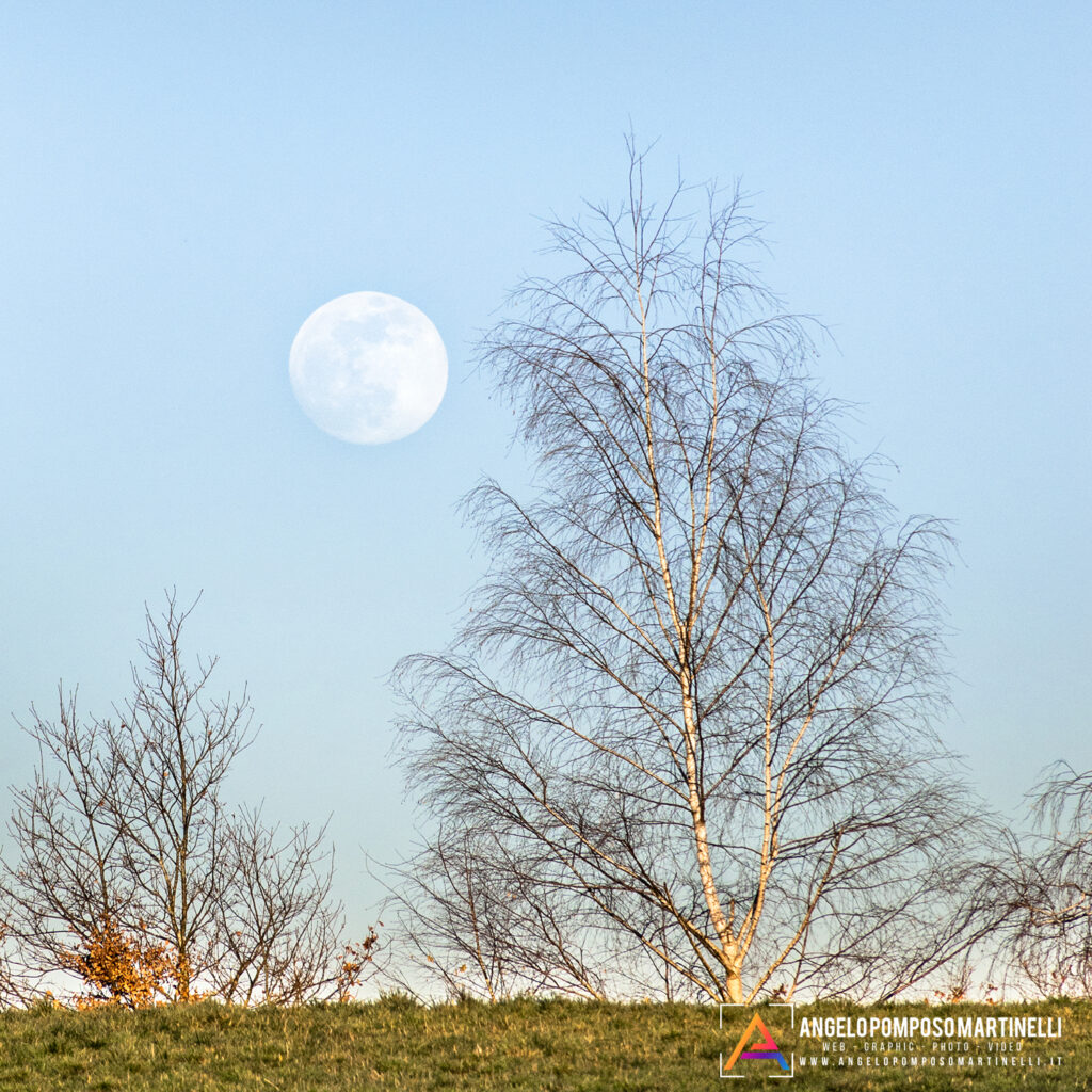 Luna Piena al Tramonto