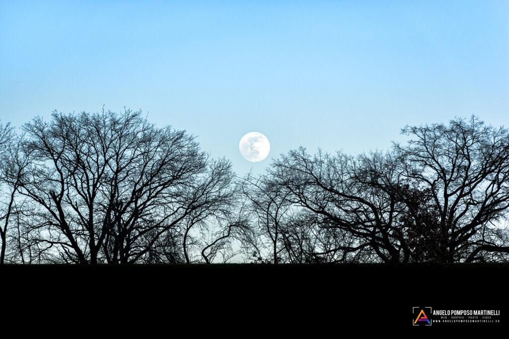 Abbracciando la Luna